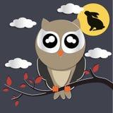 Night Owls Stock Photos