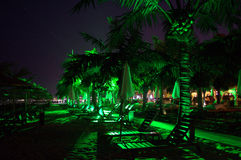 Night palm beach Royalty Free Stock Images