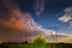 Night Pampas landscape, royalty free stock image