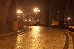 Night park. Path in the night park Royalty Free Stock Photo