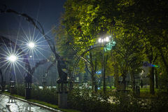 Night park Royalty Free Stock Images