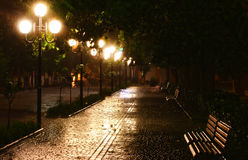 Night park. Alley in the park after a night of rain, lit by lanterns Stock Image