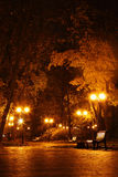 Night in the park Royalty Free Stock Images
