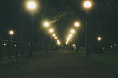 Night park alley illuminated by lampposts Royalty Free Stock Photos
