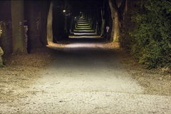 Night park with alley Royalty Free Stock Photo