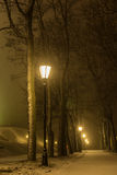 Night park alley view with lanterns during snowstorm. Winter evening. Heavy snowing night Stock Photo