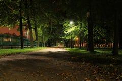 Night park. Illuminated walkway in a night park Stock Image