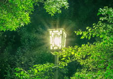 Night park lantern Royalty Free Stock Images