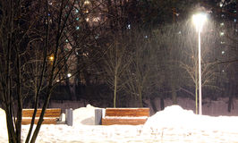 In the night park of Moscow there is a heavy snowfall. The Russian Federation the city of Moscow the park at Altufyevo`s subway the Region of Lianozovo the Stock Photos