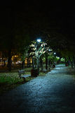 Night in park Royalty Free Stock Image