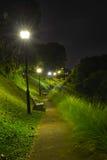 Night Park Stock Photography