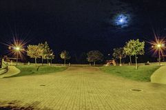 Night in the park Royalty Free Stock Photos