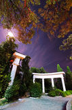 Night in the park. Trees behind the columns. Royalty Free Stock Image