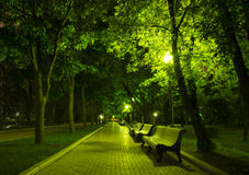 Night Park. Wood Benches and Alley at summer Royalty Free Stock Photos