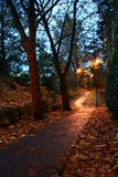 Night path. A Park path at night Stock Photo
