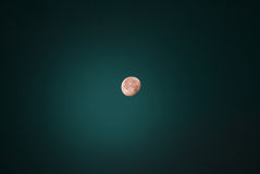 Night Photography. Earth satellite. Full moon. Royalty Free Stock Images