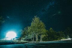 Night Photography of Tree Stock Images