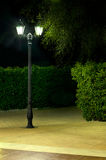Night picture of the lamp in the park Stock Photography