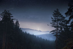 Night pine trees forest & mountain and thunder Royalty Free Stock Image