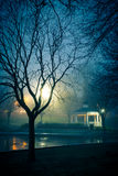 Night at Pond Royalty Free Stock Photo