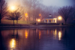 Night at Pond Royalty Free Stock Photography