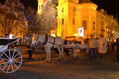 Night Prague square horse carriages Stock Photos