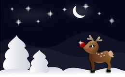 Night reindeer Royalty Free Stock Image