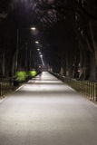 Night Runners Near the Reflecting Pool Royalty Free Stock Photo