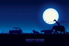 Night Safari Royalty Free Stock Image