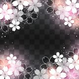 Night sakura blossom. Cherry blossoms on checkered pattern background Stock Image