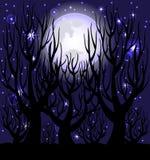 Night scene. Stock Photo