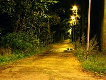 Night scene. Path in the park at night stock images