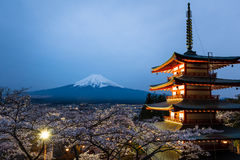 Night scene of Chureito Pagoda and Mt. Fuji with blooming sakura Stock Photos