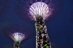lights at night Gardens by the bay singapore Malaysia Stock Photo