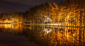 Night scene on the lake with trees reflection in the water Royalty Free Stock Photography