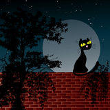 Night scene with moon and black cat. Sitting on the wall Royalty Free Stock Images
