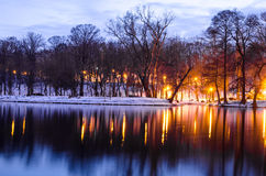 Night scene in park. Trees reflecting in water at dawn Royalty Free Stock Photos