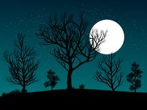 Night scene with stars and moonlight royalty free illustration