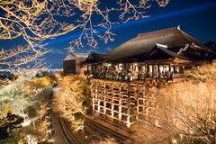 Night scene of temple in Japan with light up in fall Stock Image