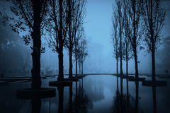 Night scene with trees and pond in Parma Royalty Free Stock Photos