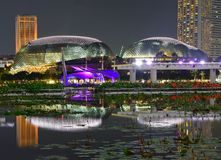 Night scenery of the brightly lit Esplanade Theatres on the Bay at Marina Bay Singapore. With a large pond clear reflection & lotus plants in the foreground stock photography