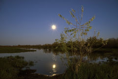Night scenery at lake of the moon in  sky. Stock Photography