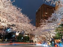Night scenery of Roppongi Ark Hills in Tokyo downtown during Sakura Matsuri Festival. With busy traffic trails on the street and beautiful illumination of stock photo