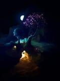Night Scenic Landscape Stock Images