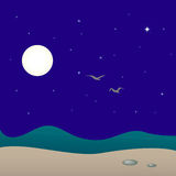 Night seascape, vector illustration. Two seagulls under the sea and beach at night. Art vector illustration for your design Stock Photography