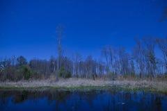 Night shot of the Okefenokee Swamp Stock Photo