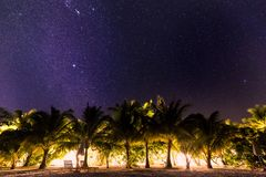 Night shot with palm trees and milky way in background, tropical warm night stock images