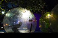 Joyful children in a floating balloon in a pool. Night silhouette of joyful children in a zorb floating on a pool stock images