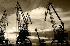 Night silhouettes of cargo cranes in the sea port black & white photo Stock Photo