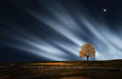 Night skies over rural landscape Royalty Free Stock Image